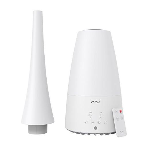 humidifier with remote control two type nozzles