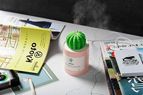 AOLODA Humidifier, 280ml USB Cool Mist Portable Cactus Air Office