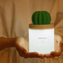 Mini USB Cactus Air Humidifier Diffuser Aromatherapy  with N